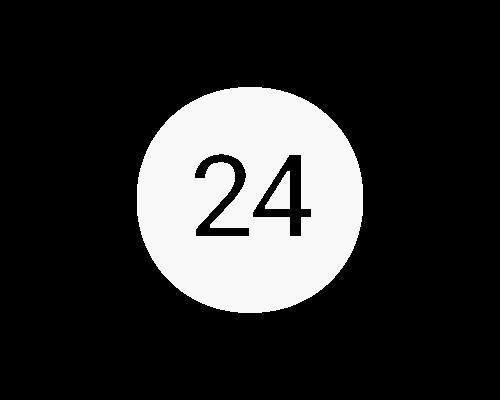 Baston de sprijin DeLuxe reglabil argintiu3 - stoc24.ro